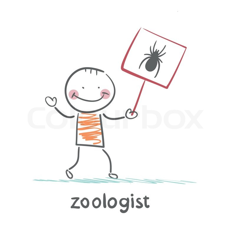 Zoologist holds a placard with a spider | Vector | Colourbox