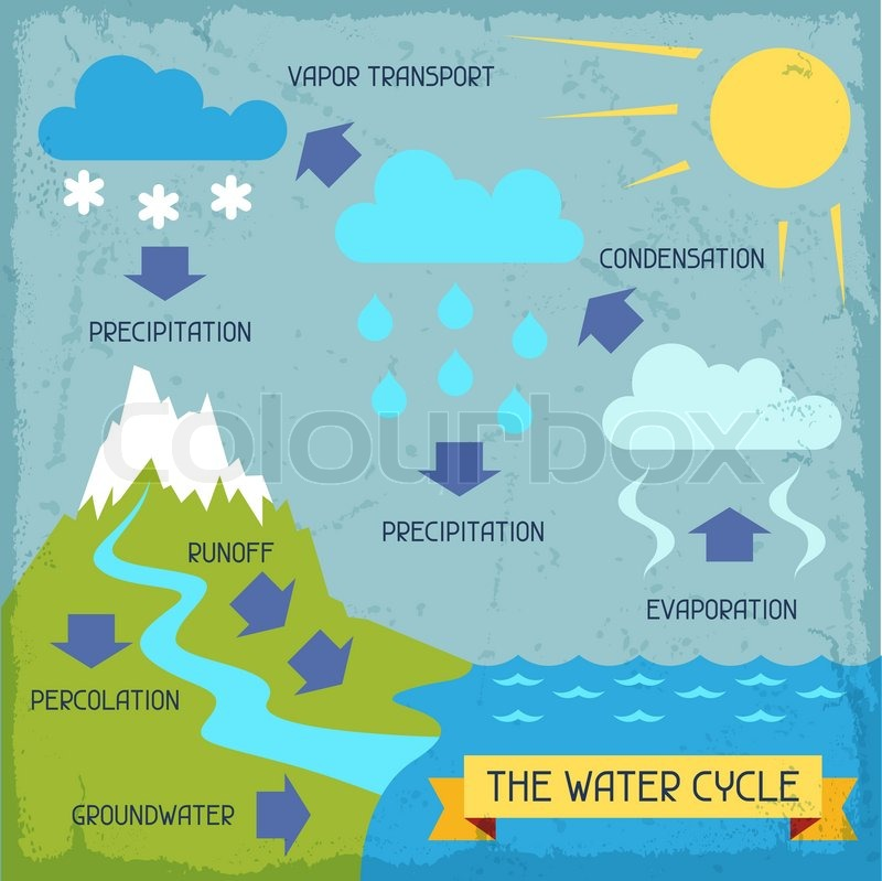 The Water Cycle Poster With Nature Infographics In Flat Style Vector 8271220 on Water Vapor Science Worksheets For Grade 5