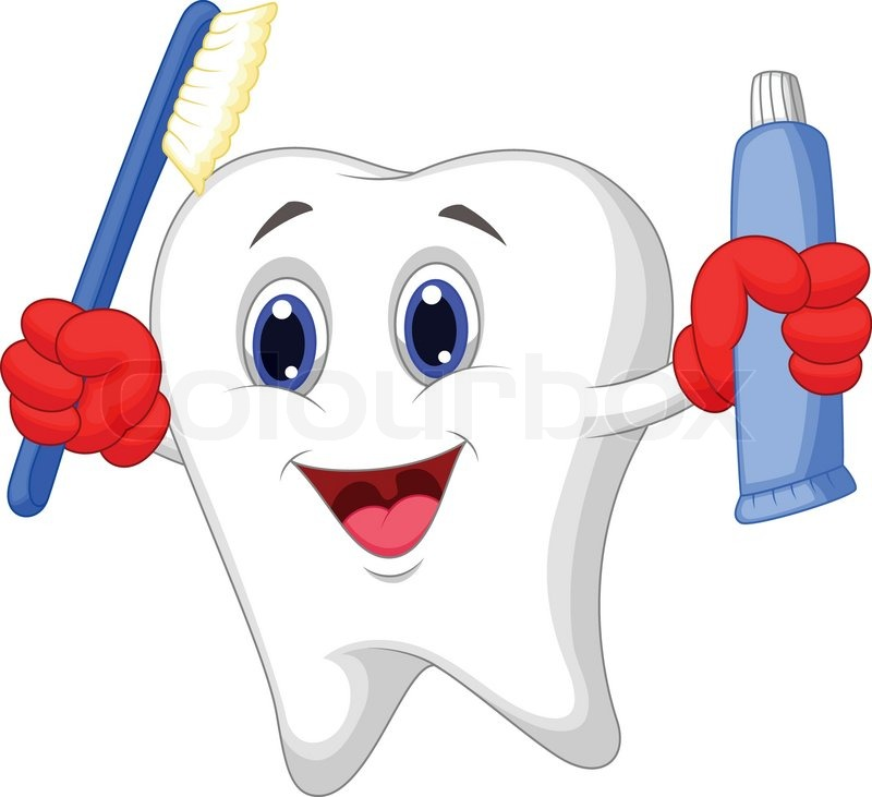 Vector illustration of Tooth cartoon holding toothbrush ...