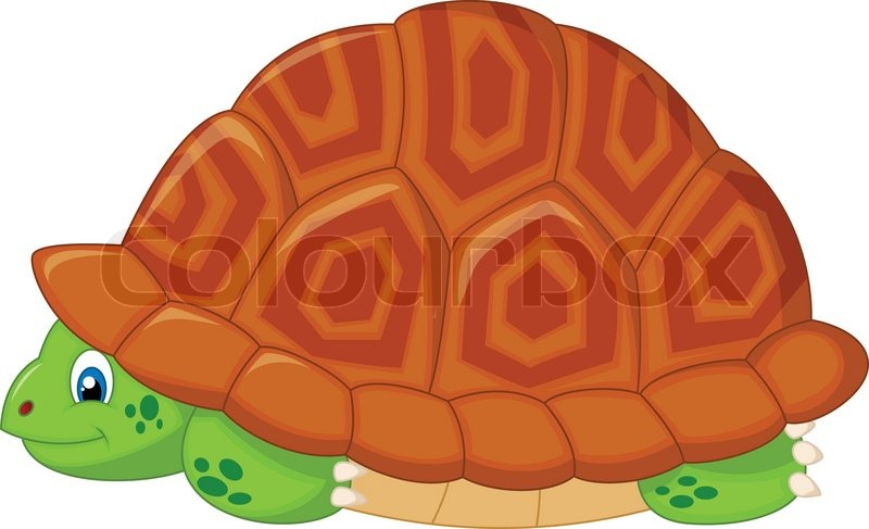 Vector Illustration Of Turtle Cartoon Stock Vector Colourbox