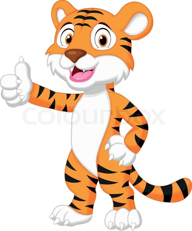 vector illustration of cute tiger cartoon giving thumb up stock rh colourbox com cartoon tiger images download tiger cartoon pictures