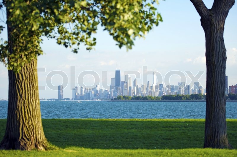 Chicago and Lake Michigan. Grassy Field and Old Trees on the First Plan, Lake Michigan and Downtown Chicago Skyline in the Distance, stock photo