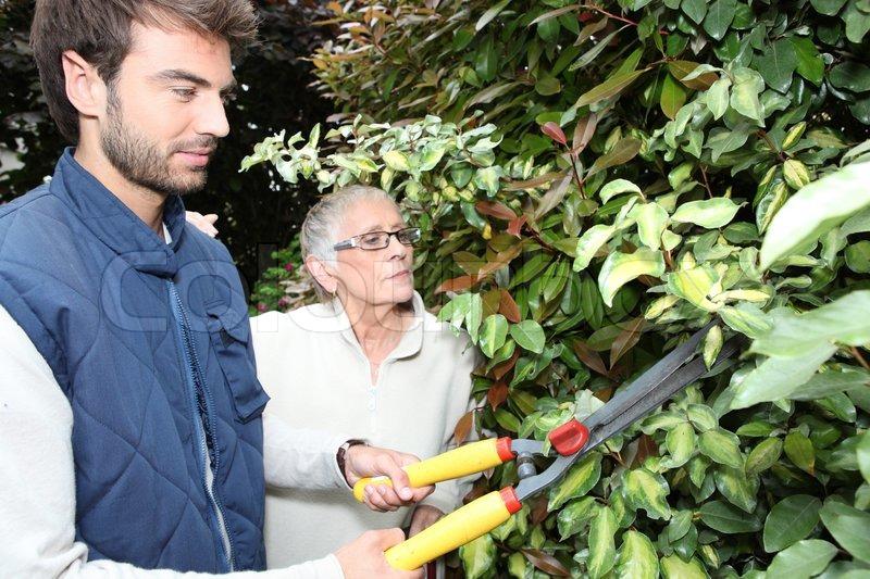 Ung mand havearbejde med ældre kvinde | Stock foto | Colourbox