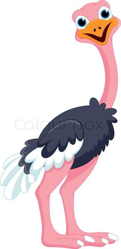 cute cartoon ostrich stock vector colourbox cute bird clipart for free cute bird clipart png