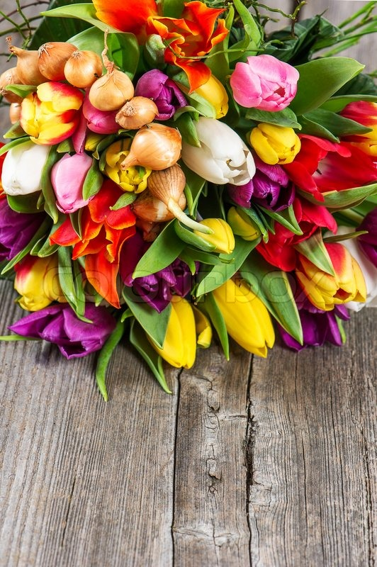 Bouquet Of Fresh Colorful Spring Tulips Flowers Over Rustic Wooden Background
