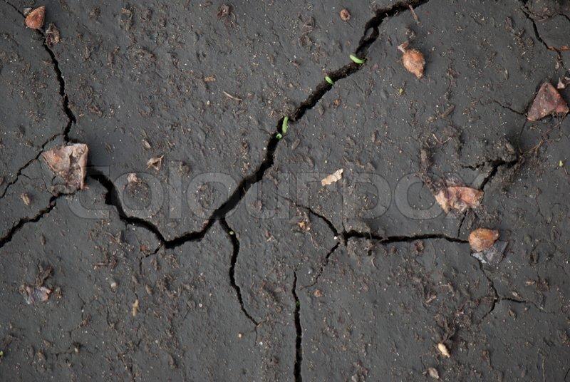 Cracked black earth, stock photo