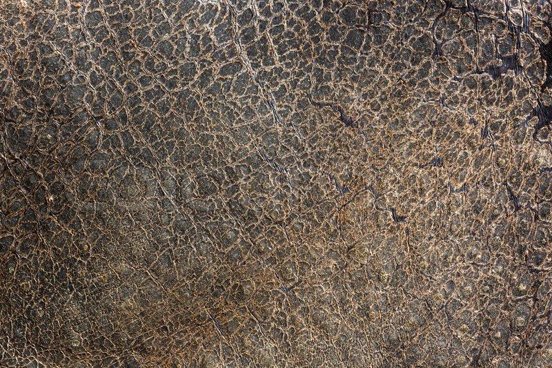 rhino marine for rhino 5 crack