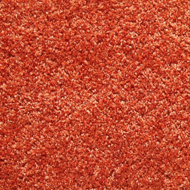 Orange Carpet Texture Stock Photo Colourbox