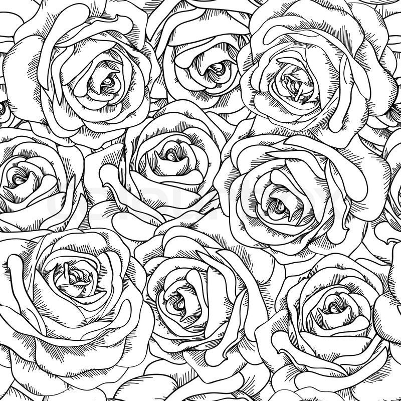 Black And White Seamless Background Roses Hand Drawn