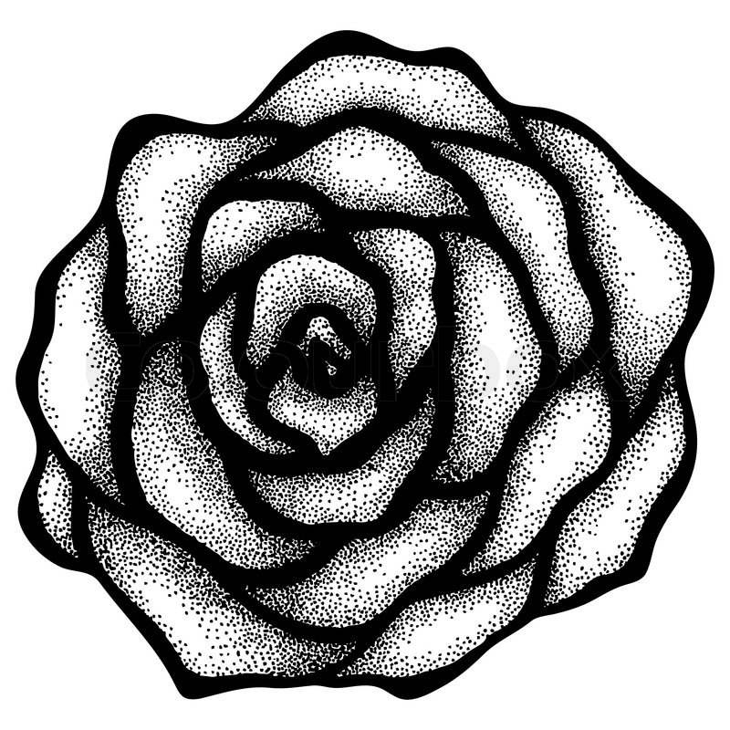 Abstract Rose Free Hand Drawing In A Stock Vector