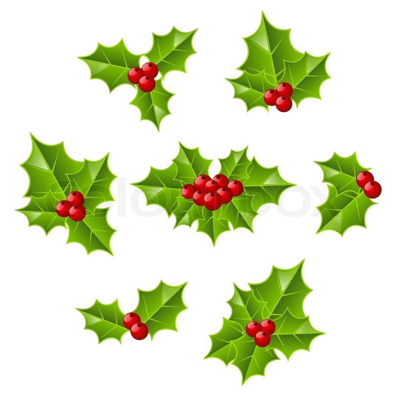 Christmas Leaves.Set Of Christmas Holly Leaves Stock Vector Colourbox