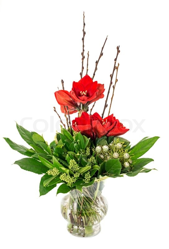 Glass vase with red amaryllis green leaves and white roses for Vase amaryllis