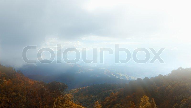 Spring morning rural landscape with sun burst, stock photo