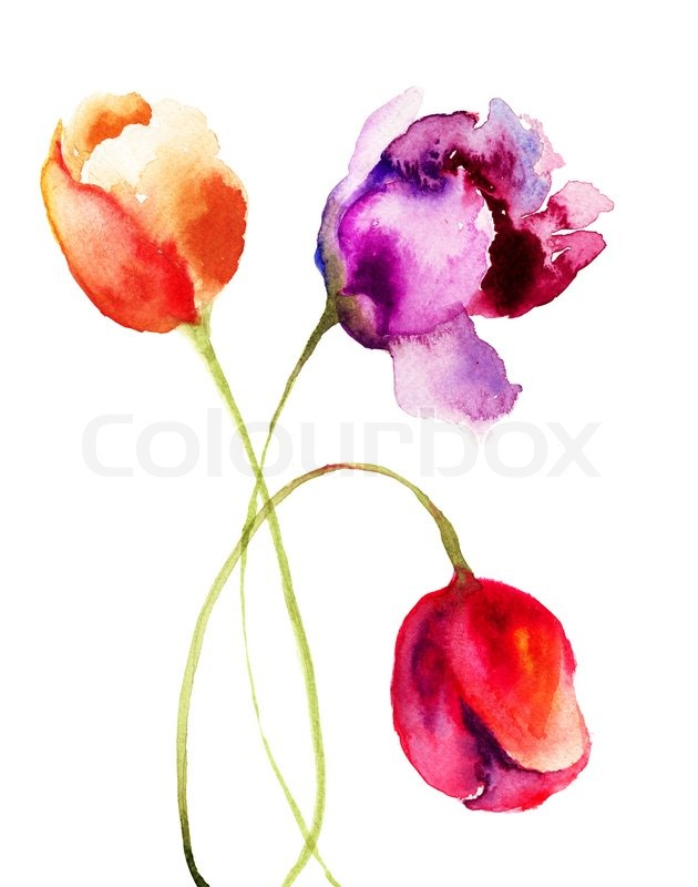 Tulips watercolor painting images for Watercolor flower images