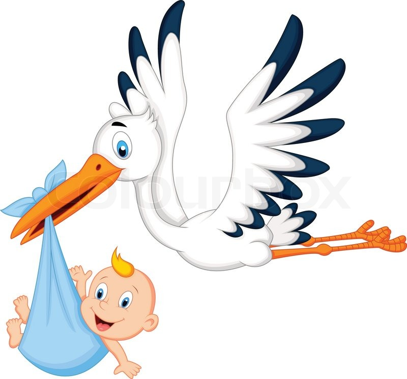 Cartoon Storch Mit Baby Stock Vektor Colourbox