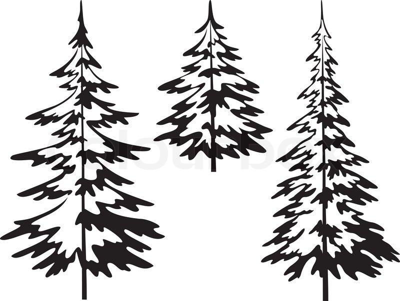 Christmas Fir Trees, Symbolical Pictogram, Black Contours