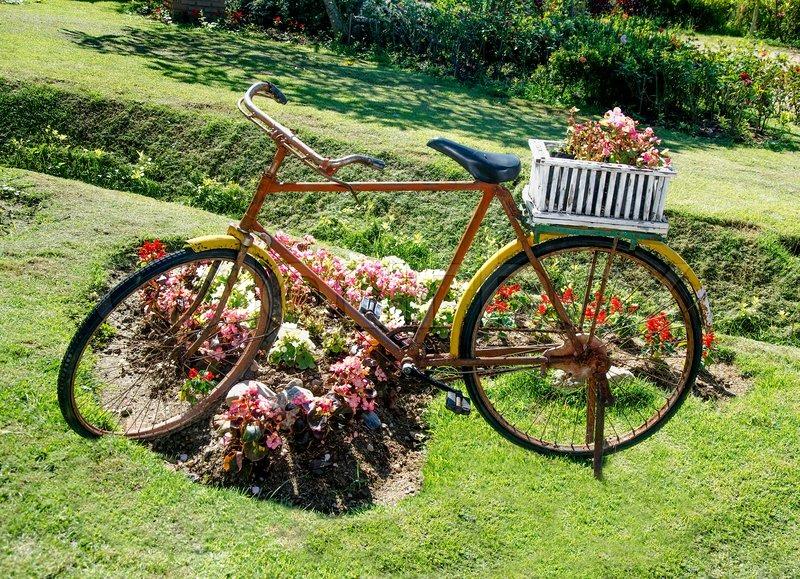 alten fahrrad mit blumen korb stockfoto colourbox. Black Bedroom Furniture Sets. Home Design Ideas