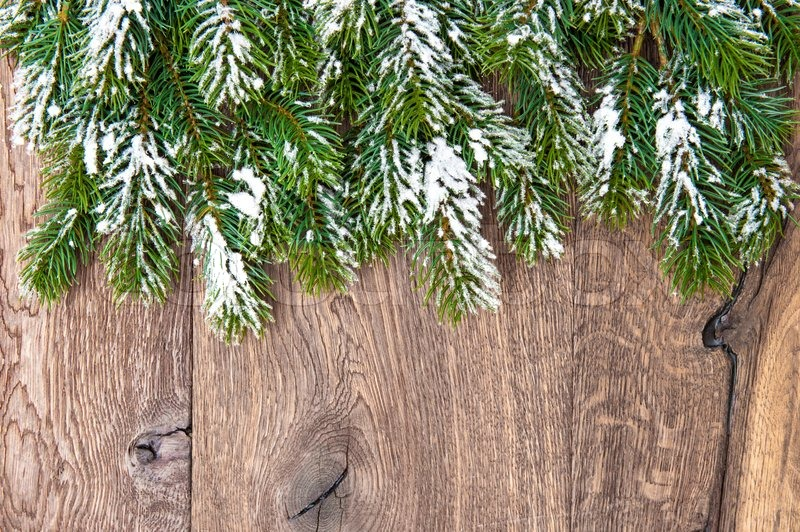 Christmas Tree Branches Over Wooden Background Green Border From Undecorated Evergreen Twigs On Rustick Backdrop