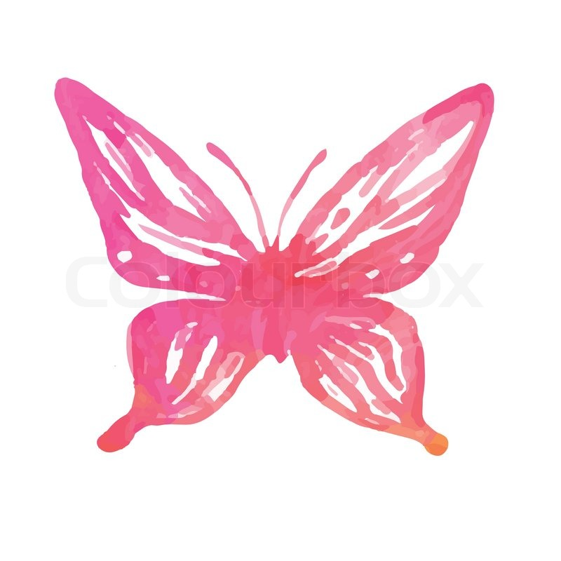 Amazing watercolor butterfly. Vector art isolated on white