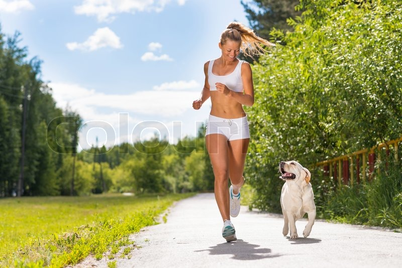 Young athletic woman running on the road with white labrador, exercise outdoors, stock photo