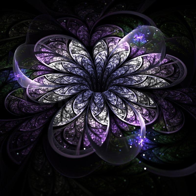 Fractal Black Flower Free Stock Photo: Purple Fractal Flower On Dark Background, Digital Artwork
