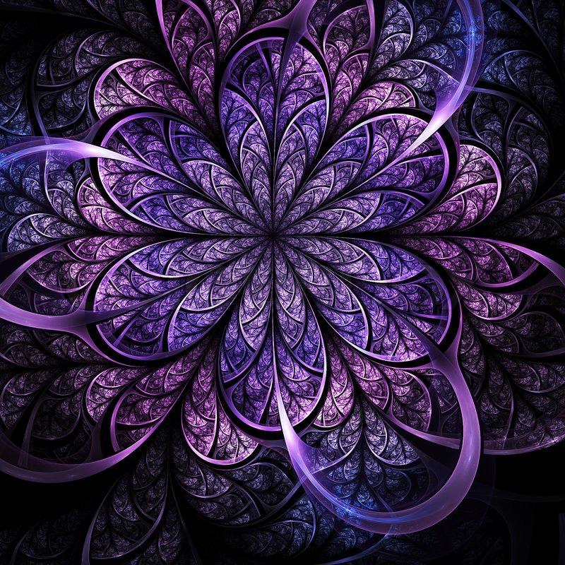 Fractal Black Flower Free Stock Photo: Dark Romantic Fractal Flower, Digital ...