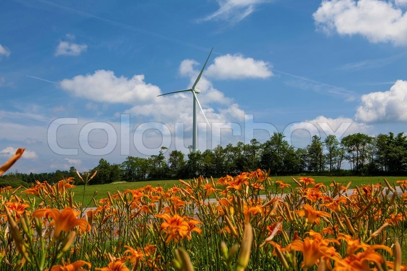 Power Generating Windmills Energy Solution For The 21st