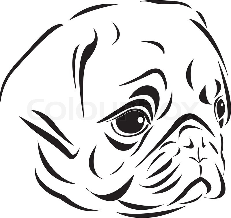 Pug Face Line Drawing : The line art style of pug head stock vector colourbox