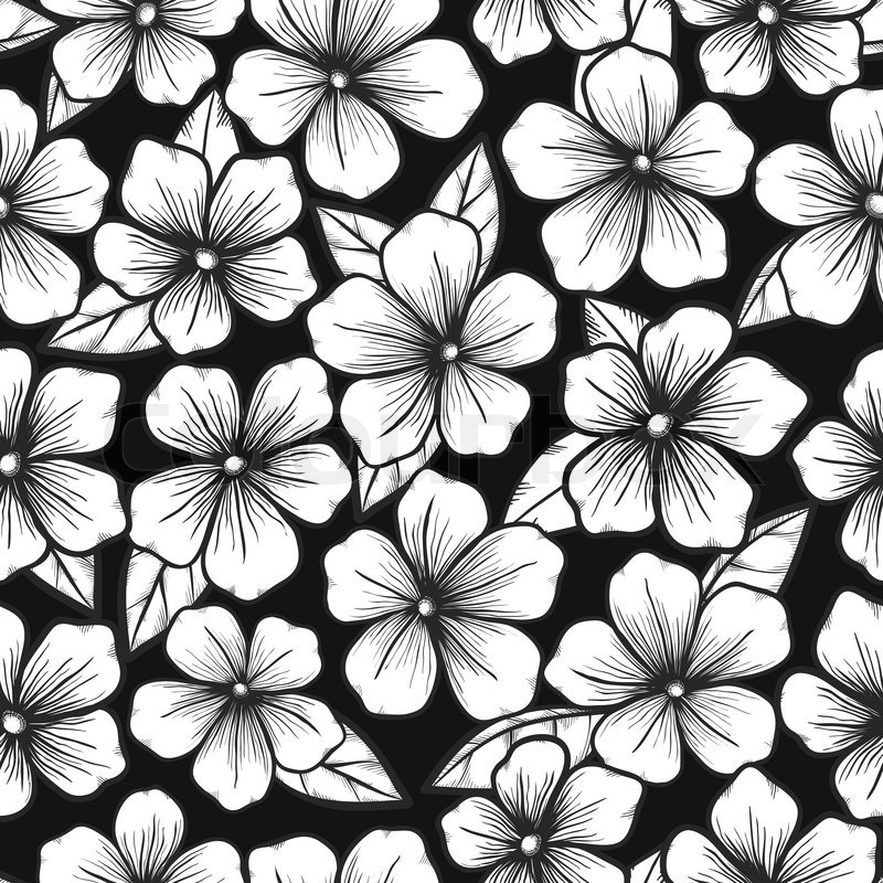 Beautiful black and white seamless background with graphic outline of flowers stock vector colourbox