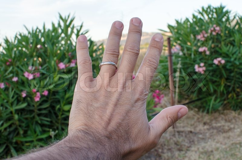 Man Hand with a Wedding Ring Italy Stock Photo Colourbox