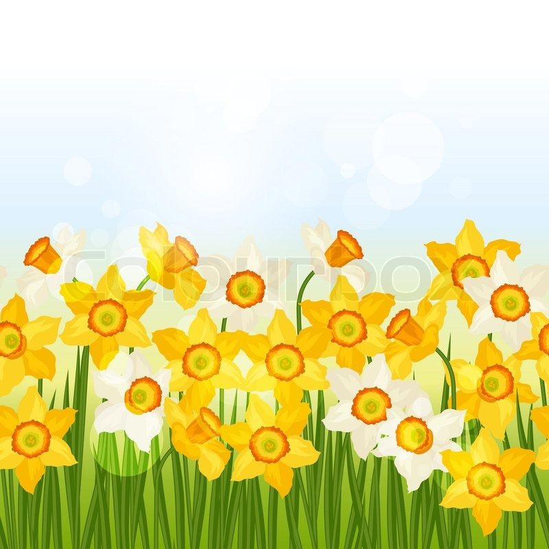 Spring Flowers Narcissus Seamless Pattern Horizontal