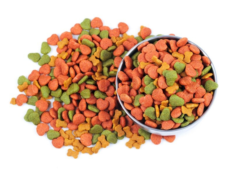 Picture Of Overflowing Dog Food Bowl