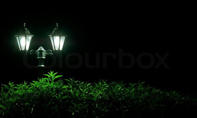 Outdoor Night lamp in park. Night light, stock photo