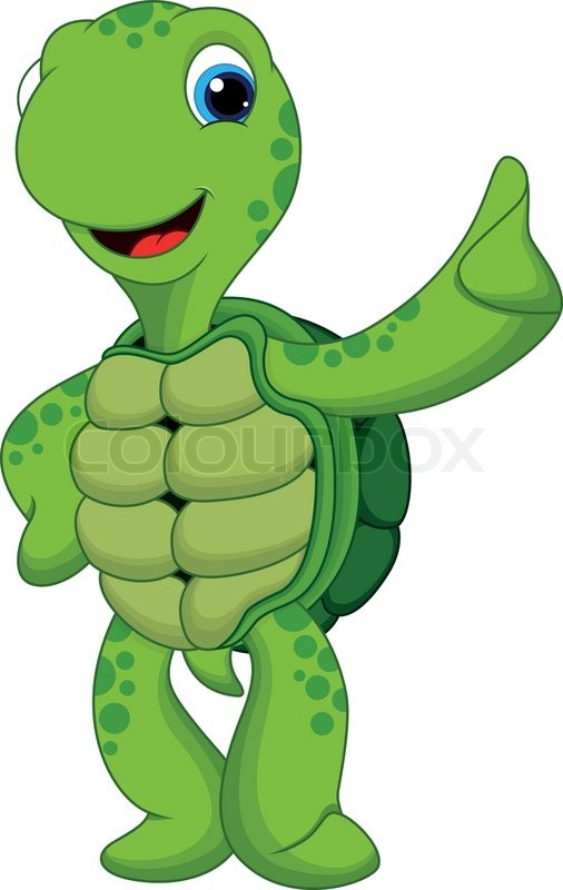 Cute Turtle Thumbs Up Stock Vector Colourbox