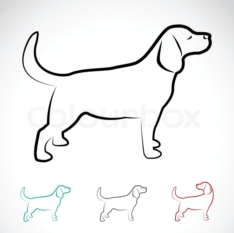 vektorbild von einem hund labrador  stockvektor  colourbox