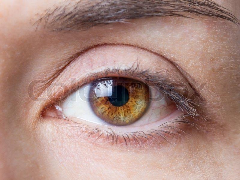 Фото зелёных глаз без макияжа