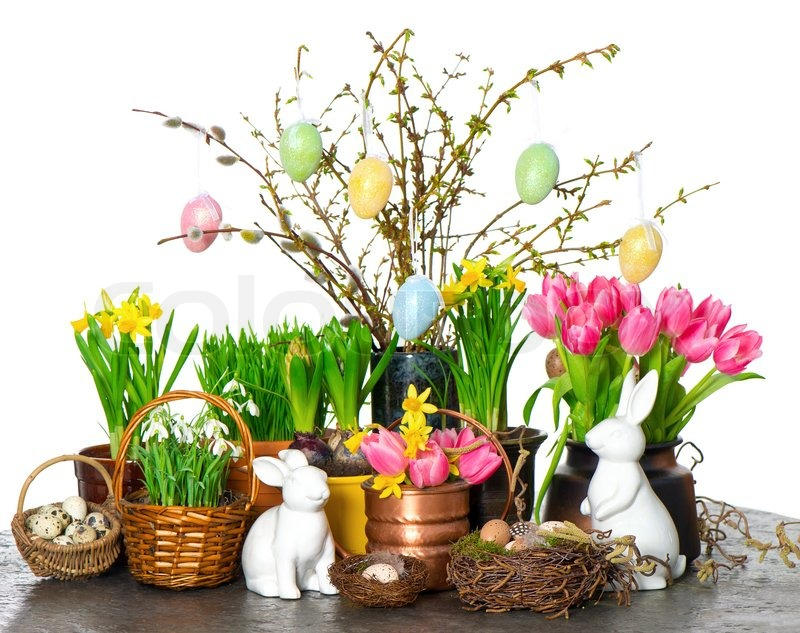 fr hlingsblumen mit ostern osterhase und eiern dekoration stockfoto colourbox. Black Bedroom Furniture Sets. Home Design Ideas
