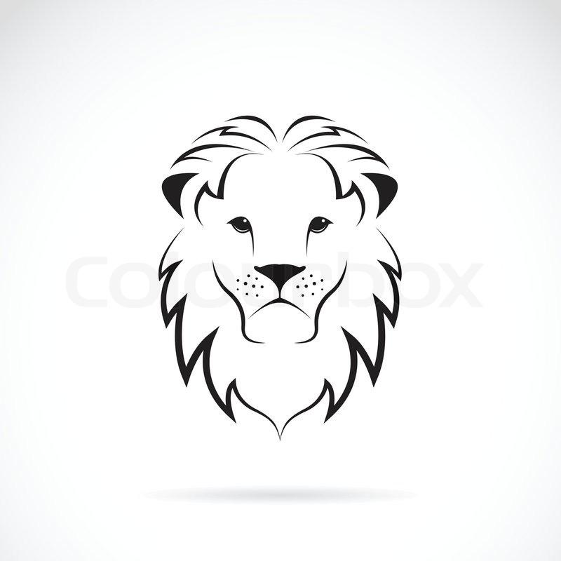 Line Drawing Lion Face : Vektor bild von einem löwenkopf vektorgrafik colourbox