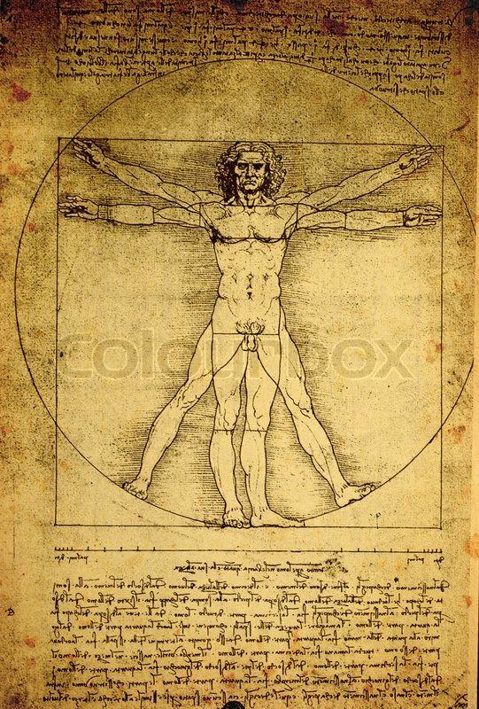 Close Up Of Old Anatomy Drawings By Leonardo Da Vinci Stock Photo