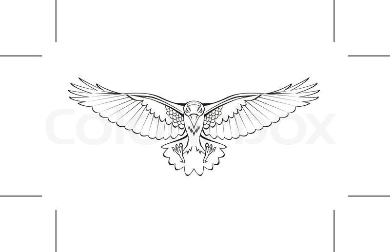 Fliegenden Krähe | Vektorgrafik | Colourbox