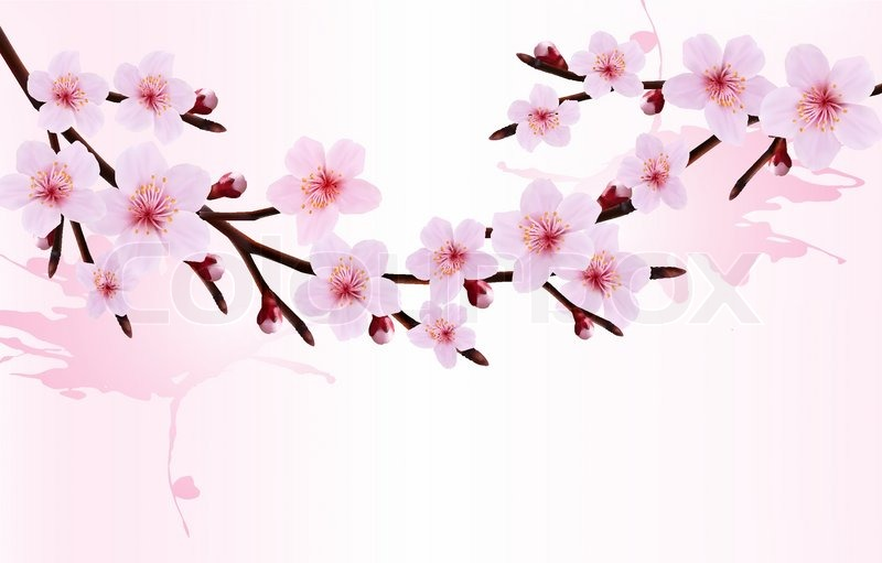 Spring background of a blossoming tree branch with spring flowers spring background of a blossoming tree branch with spring flowers vector illustration vector mightylinksfo Images