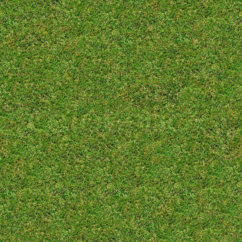 seamless tileable texture of green meadow grass