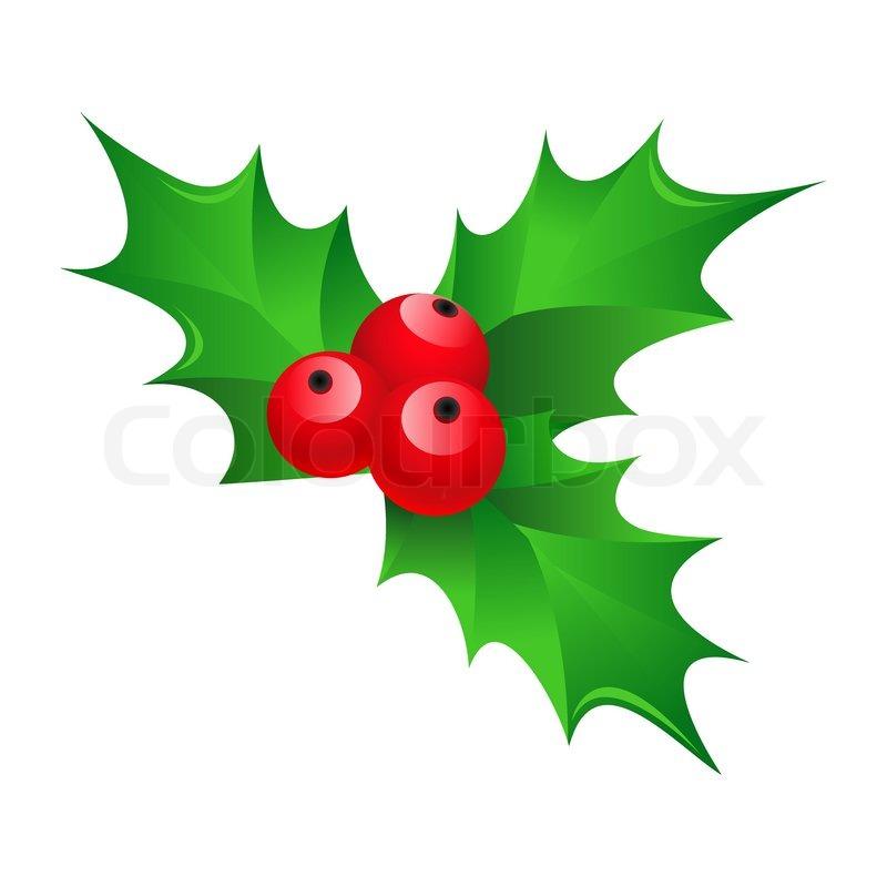 Cartoon Shiny Christmas Mistletoe Stock Vector Colourbox