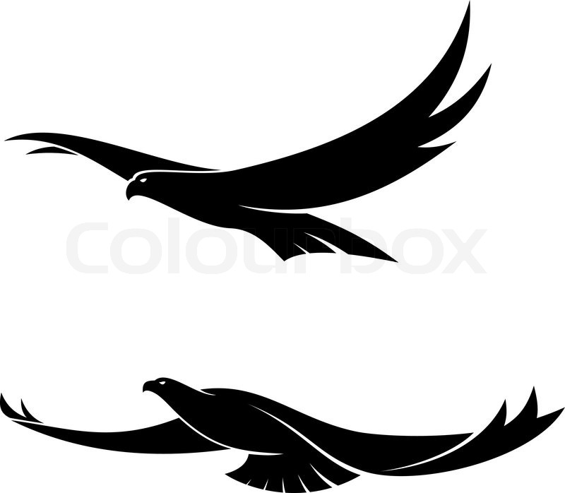 Silhouette in black of two graceful flying birds with ...