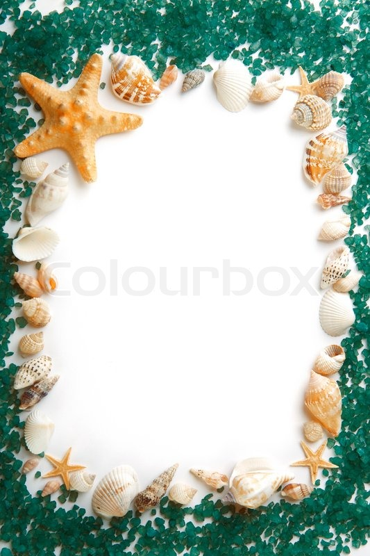 image on a frame composed of sea shells and sea salt