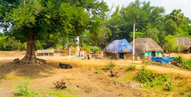 Beautiful Landscape Of The Village Houses With Thatched