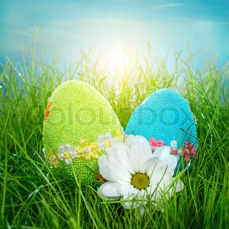 Stock image of 'Decorated easter eggs in the grass on blue sky background'