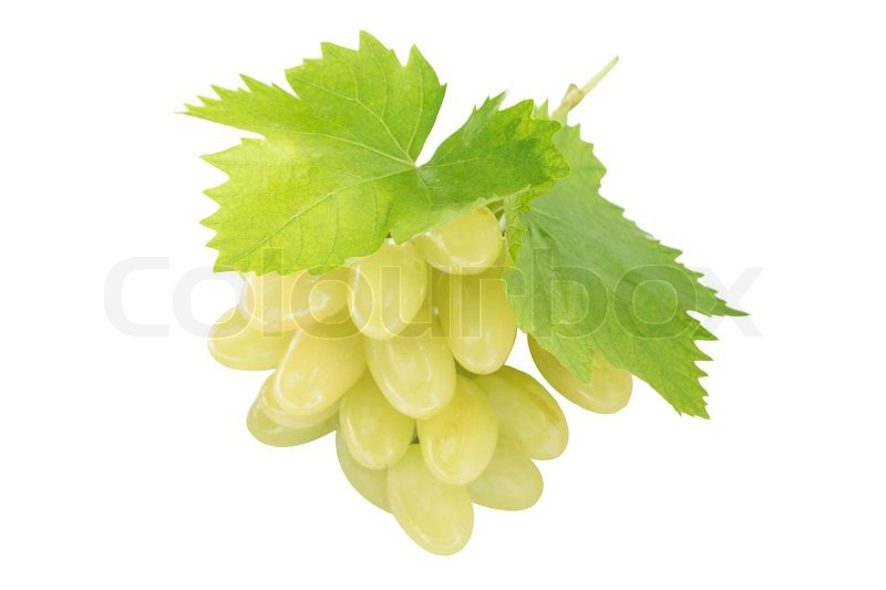 Stock image of 'Ripe grapes with leaf, isolated on white background.  (with clipping work path)'