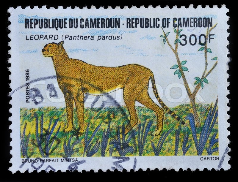 Editorial image of 'CAMEROON - CIRCA 1986 : postage stamp printed in Cameroon shows Leopard, circa 1986'