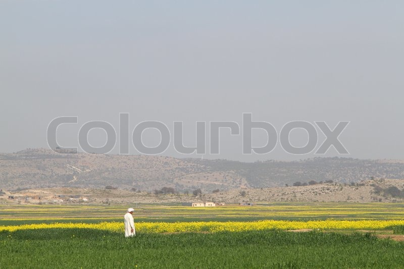 Editorial image of 'A farmer standing in his field, taking care of his crop.'
